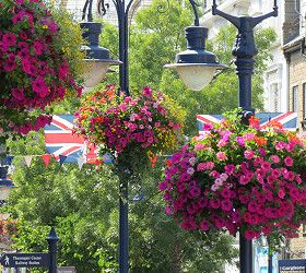 Amberol customers prepare for 2019 Britain in Bloom finals