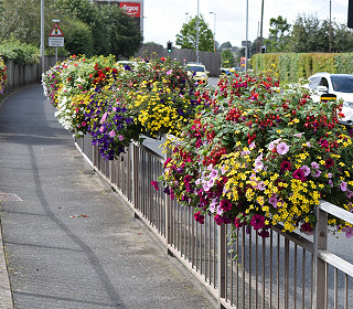 Biddulph in Bloom – the secret of success