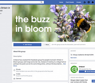 Looking for inspiration? Join Amberol's Buzz in Bloom Facebook group