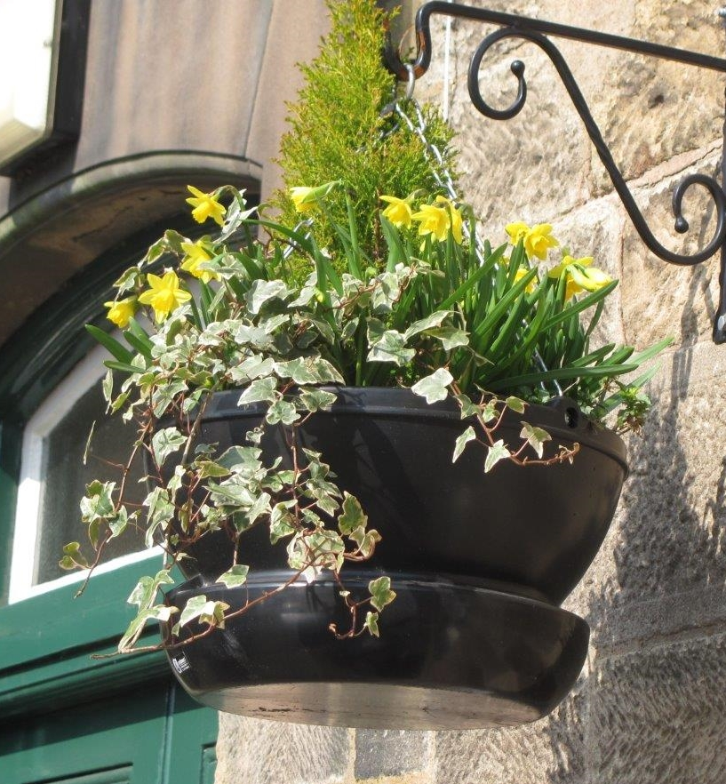 Amberol's self-watering technology 'a touch of genius' says Tidy Towns report