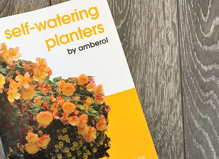 Amberol's new brochure celebrating 50 years in business