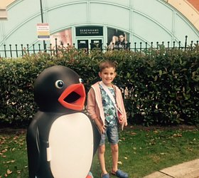 Penguin spotted in Lincoln!