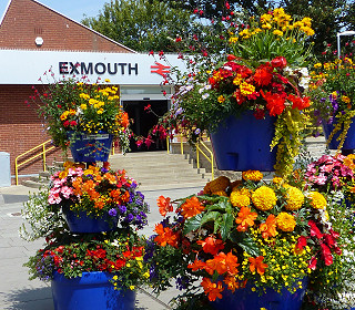 Can your local economy benefit from Britain in Bloom?